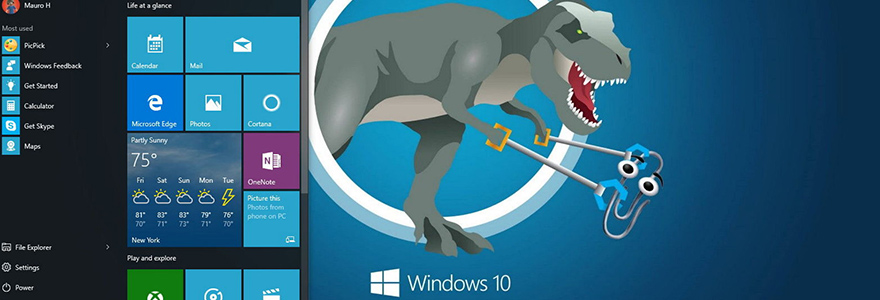 Microsoft / Windows geek